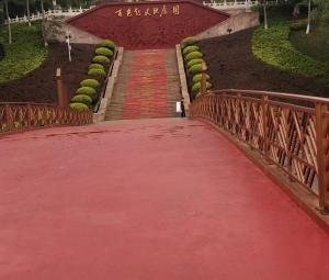 """发现百色起义纪念园五一新增""""红毯""""迎客。"""